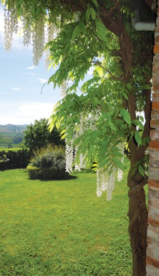 Il giardino in fiore