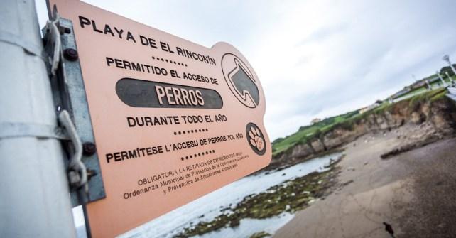 Playa El Rinconin (acceso permitido para perros)
