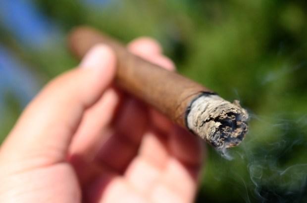 Bonita Smoke Shop Time Warp Time Zone