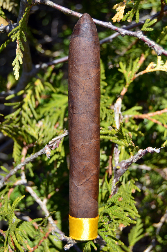 Crowned Heads - Yellow Rose