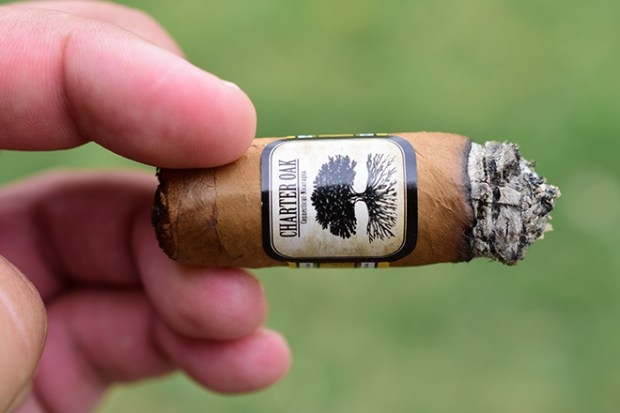 Foundation Cigar Company Charter Oak Shade