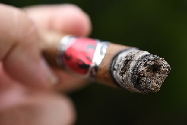 Ventura Cigar Company Archetype Initiation