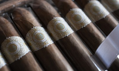 Warped Flor de Valle Seleccion de Valle