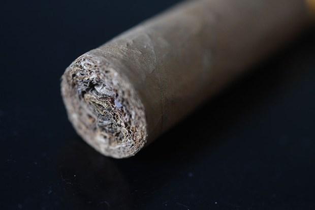 cohiba-robustos-5-1