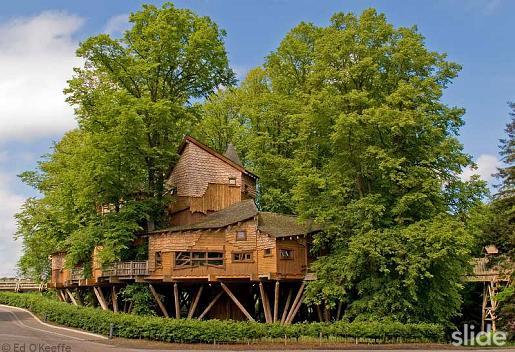 Το μεγαλύτερο σπίτι σε δέντρα