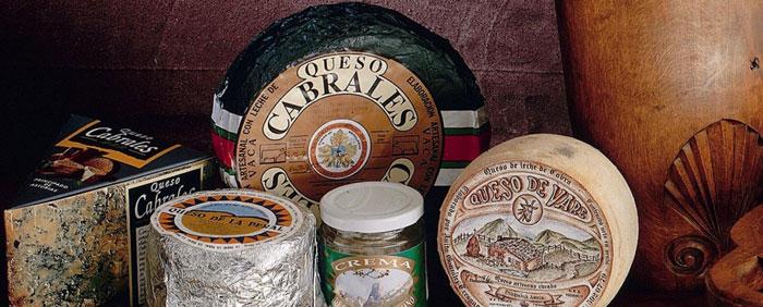 Tipos de quesos de asturias