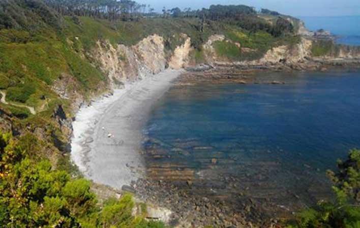 playa perros asturias