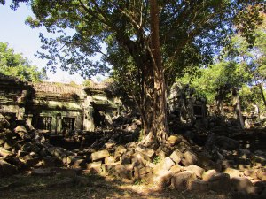 Beng Mealea is one of Angkor's most impressive temples, with a wonderful combination of ruins and decorative, naturally-intact buildings.