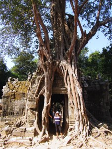 A sacred fig tree's roots entangle the eastern entrance to Ta Som temple