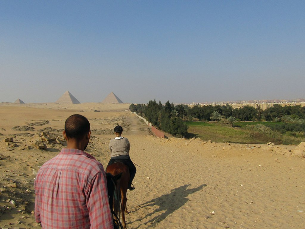 I like this picture because of the contrast of the desert on the left and the green farmland of Giza on the right.