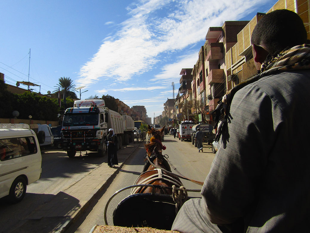 We were taken to Edfu Temple by horse-drawn carriage.