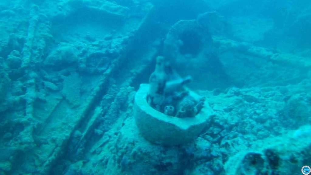 Viajando a bucear en las aguas brasileiras 38