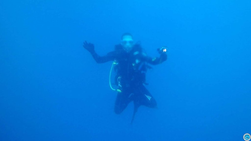Viajando a bucear en las aguas brasileiras 39