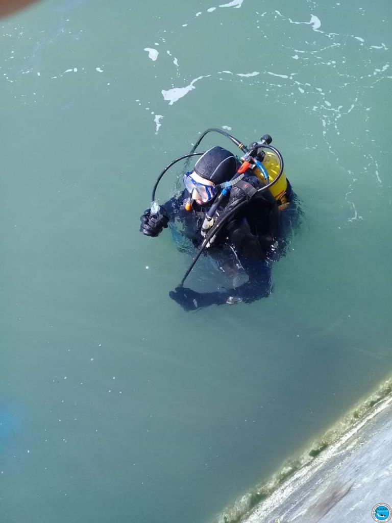 Bautismos de buceo de los Cursos Mar del Plata y Necochea 46