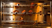 Get Fingers Worth Licking at Union Chicken! — Rotisserie Chickens on the Spits