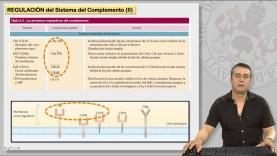 12.2 EL SISTEMA DE COMPLEMENTO Y SUS RECEPTORES (II)