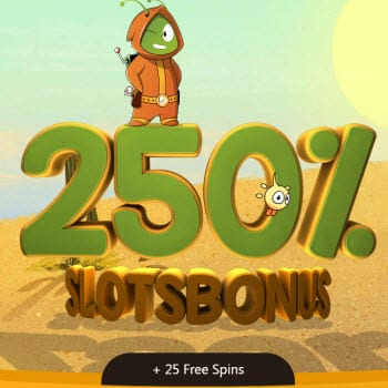 Betta Fish Gambling - The Most Played Online Casinos - Griffin Autos Slot
