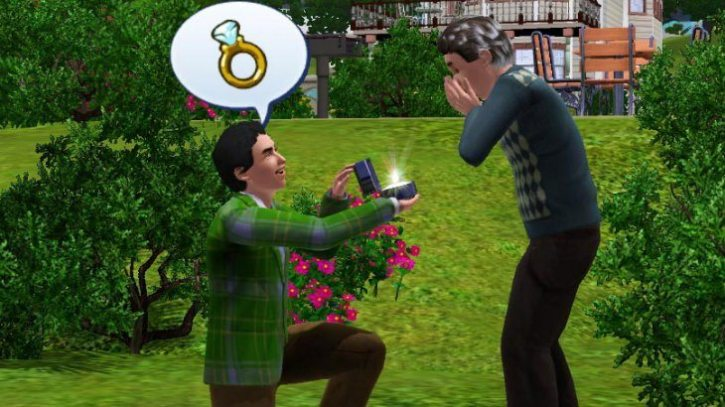 Gameplay from The Sims'