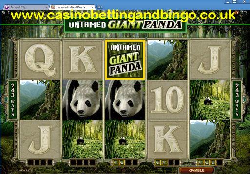 Untamed Giant Panda Slot Machine