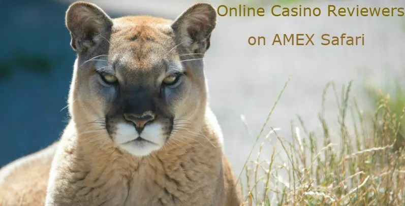 Check AMEX Casinos