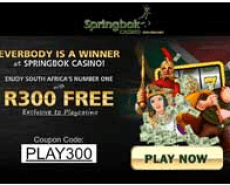 Springbok Online Casino South Africa