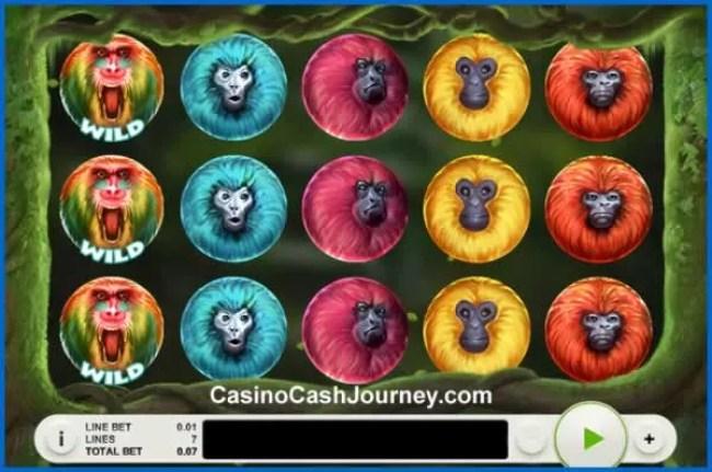 7 monkeys reels