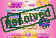 Zingo Bingo Resolved
