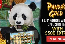 35% Cashback Weekend + Free Spins in the Casino on Panda's Gold