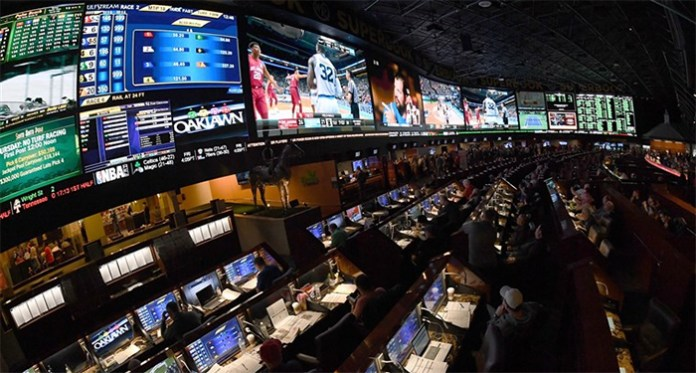 NCAA Looking into Legalized Sports Betting in US Market