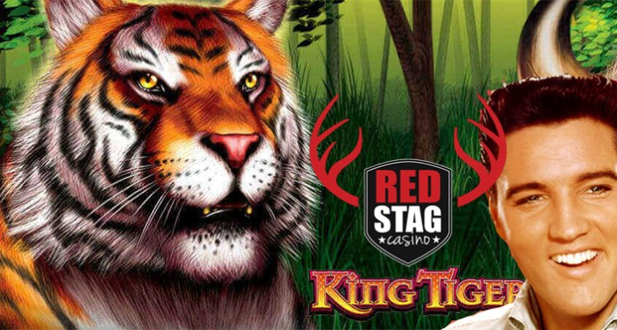 Red Stag Casino Celebrates King's Birthday with $520 Bonus + Free Spins