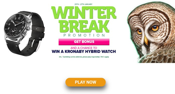 Take a Moment and Join the Winter Break Promotion at CasinoLuck