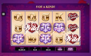 Screenshot image of Secret Romance slots Wild win