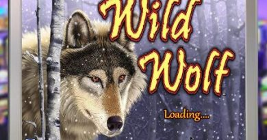 Screenshot image of the Wild Wolf slot game loading screen