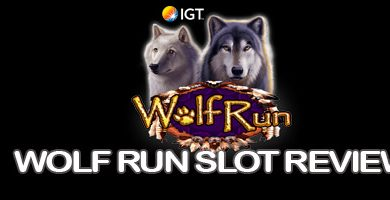 Header image of the Wolf run slot hd