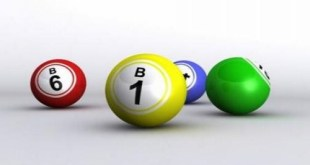 Los jugadores del bingo online ¿hombres o mujeres?