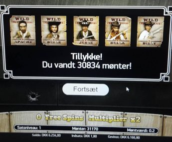 Dead or Alive spilleautomaten