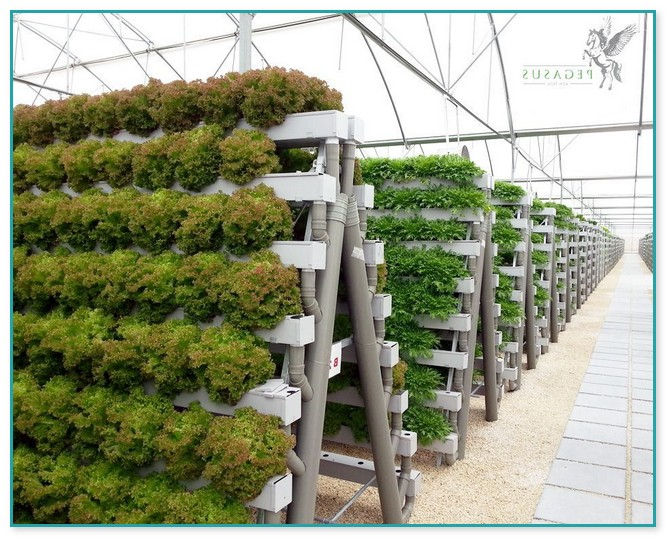 commercial vertical hydroponic systems home improvement on Commercial Hydroponic Systems Design id=21448