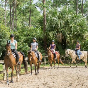 horseback riding for adults