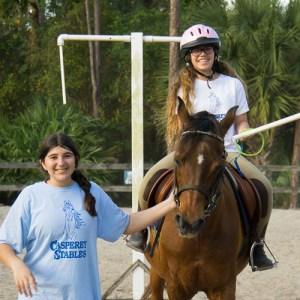 horseback games jousting