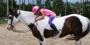 fun bareback days at horse riding lessons