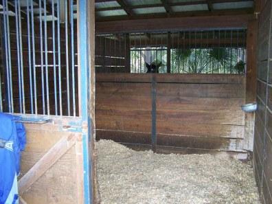 farm-18