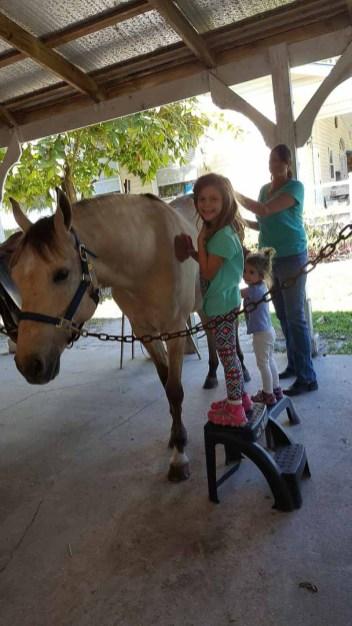 pony-parties-3