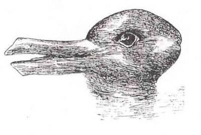 illusion-duck-or-rabbit