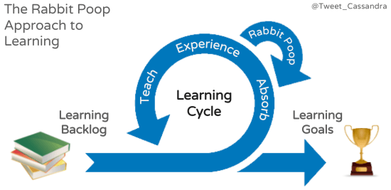 "Diagram showing a learning cycle with absorb, experience, and learning stages; there is a loop from ""experience"" back to ""absorb"""