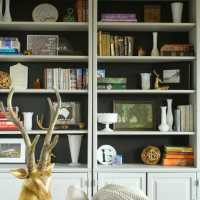 Black Backed Living Room Bookcases