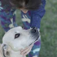 Elsie's Story: A Rescue Dog