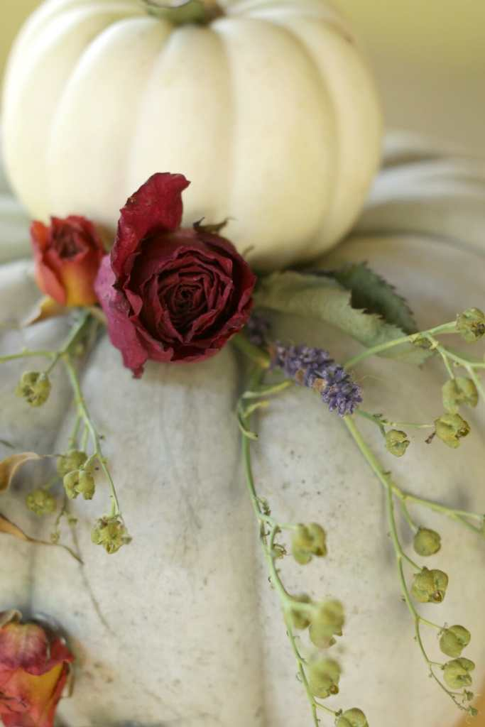 dried-roses-lavender-on-fall-pumpkin-centerpiece