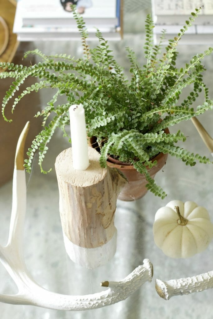 fall-coffee-table-styling-in-white-and-gold-natural