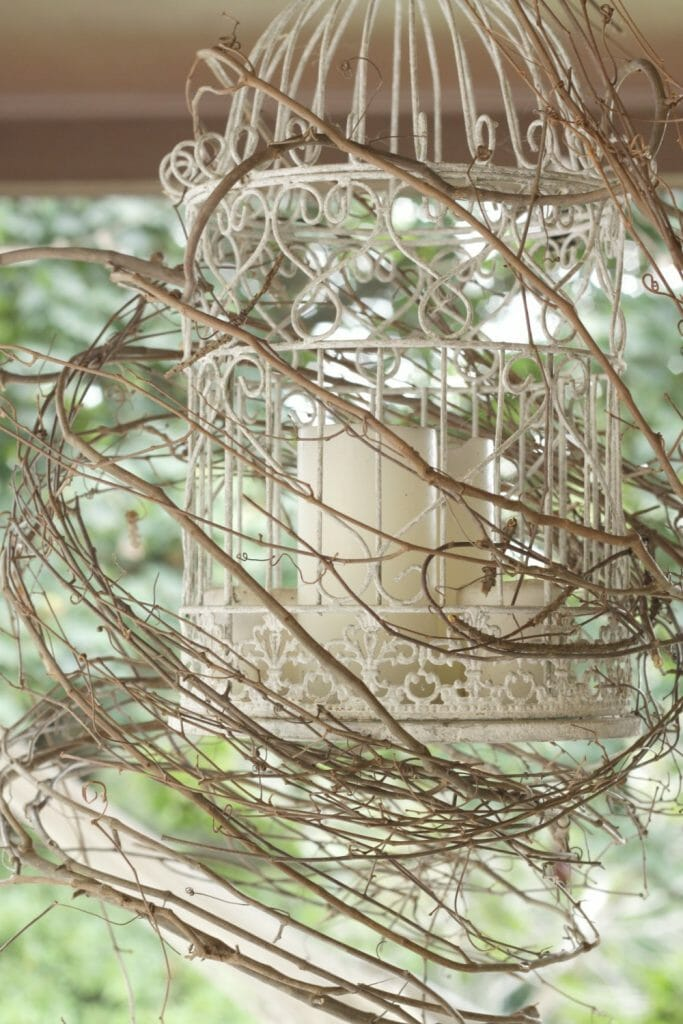Birdcage wrapped in grapevine wreath