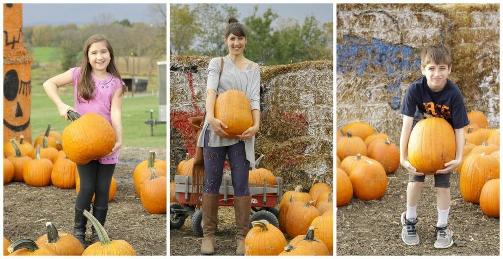 pumpkin-selections-cassie-bustamante